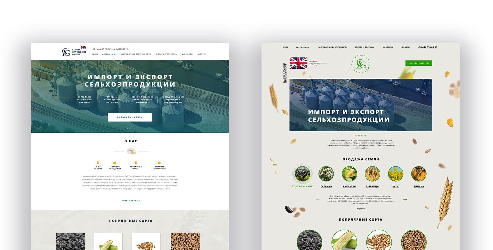 дизайн агро сайта в Одессе
