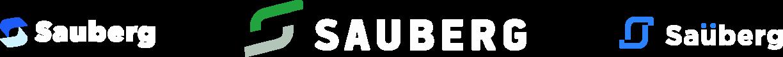 создание логотипа Sauberg Одесса